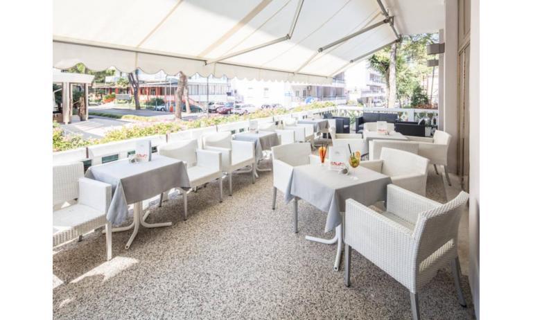 hotel DANIELI: bar terrazza