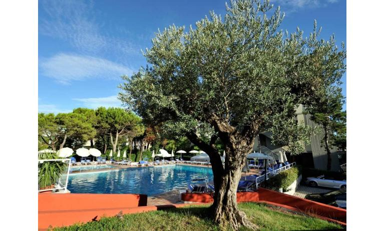 hotel BEMBO: piscina