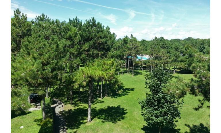 residence LIDO DEL SOLE: area verde interna
